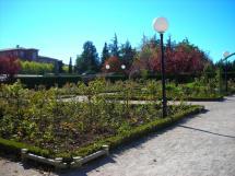 Seis empresas optan a la adjudicación del contrato de Parques y Jardines de la Ciudad de Soria