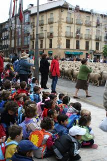 La trashumancia vuelve a las calles de Soria de la mano del Plan Turístico de Tierras Altas
