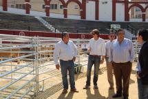 Inaugurada la tercera edición de la Feria Ganadera en la plaza de toros que incluye exhibiciones en Las Balsas y una exposición de pintura de Ángel Molinero