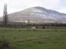 El Ayuntamiento de Soria lanza una nueva convocatoria del Voluntariado  Ambiental el 21 de julio y el 20 de octubre