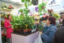 El mercado municipal comienza hoy una campaña para premiar la fidelidad de sus clientes con el sorteo de 5 lotes 'sanjuaneros'
